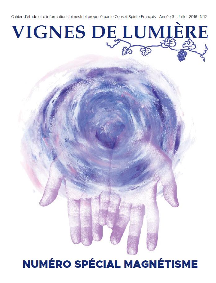 Couverture d'ouvrage: Vignes de Lumière - 12